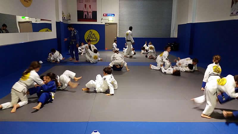gracie castle hill kids classes
