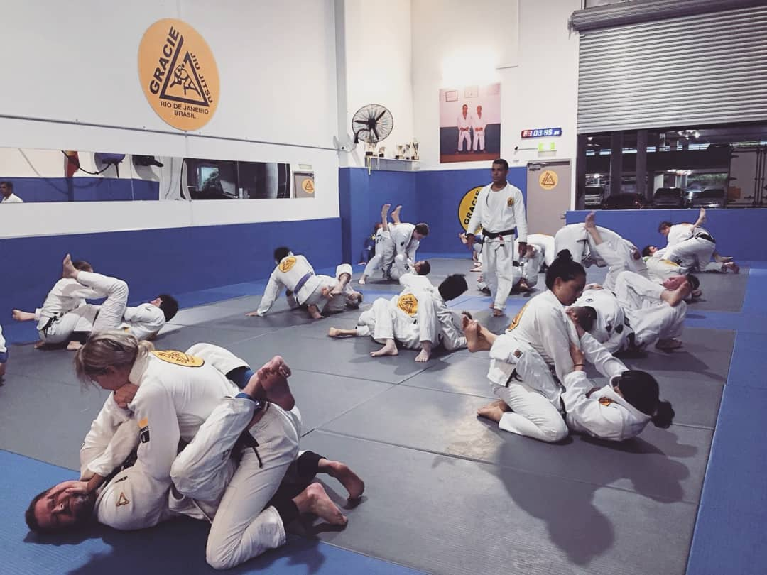 gracie jiu jitsu adults classes